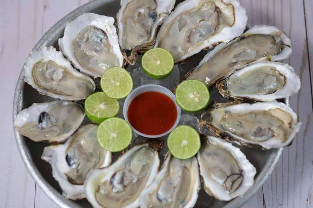 Oysters Seafood Raw