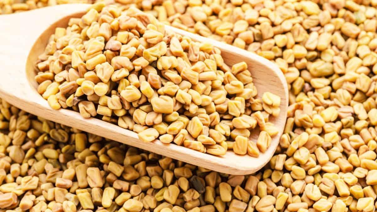 What is Fenugreek Spice?
