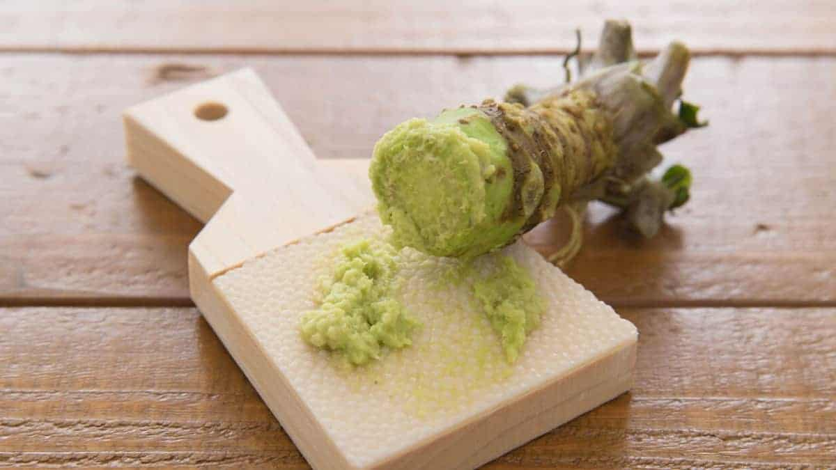 What is Wasabi Spice?